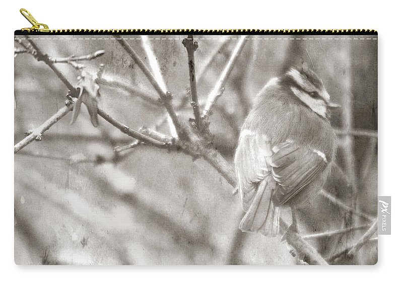 Blue Tit Carry-all Pouch featuring the photograph The Winter Time by Angel Tarantella