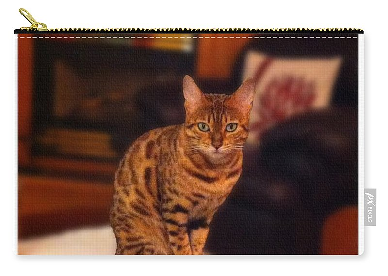 Thinking Of You Carry-all Pouch featuring the photograph Thinking Of You - Bengal Cat by Barbara Griffin