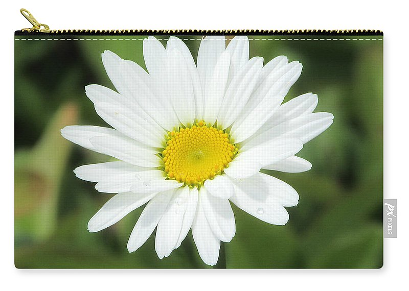 Victor Montgomery Carry-all Pouch featuring the photograph This Is Spring by Victor Montgomery