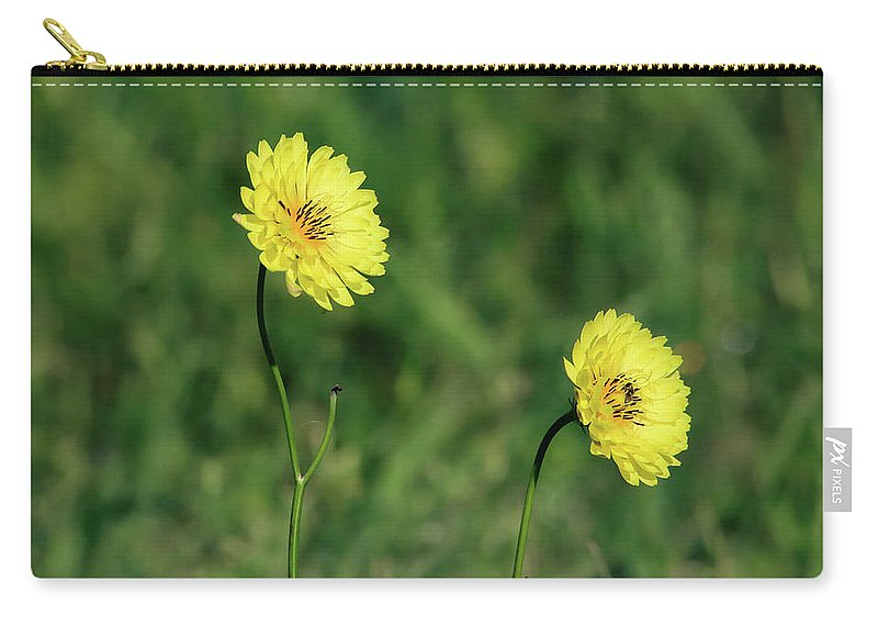 Colors Carry-all Pouch featuring the photograph This Little Light Of Mine by Burge Darwin
