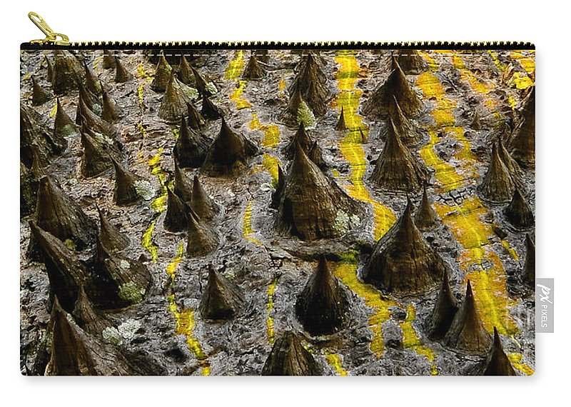White Floss Silk Tree Carry-all Pouch featuring the photograph Thorns Of Silk by David Lee Thompson