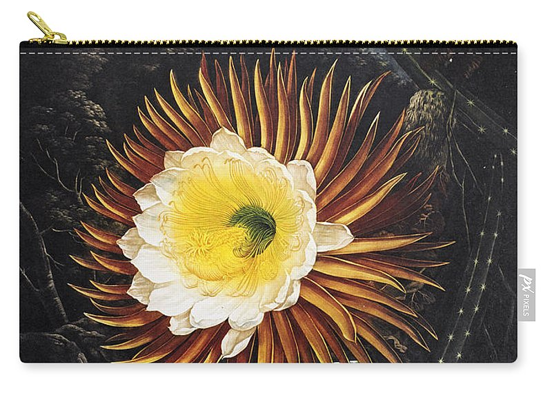 1800 Carry-all Pouch featuring the photograph Thornton: Cereus by Granger