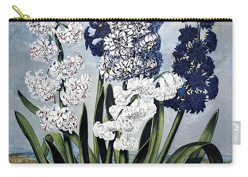 1801 Carry-all Pouch featuring the photograph Thornton: Hyacinths by Granger