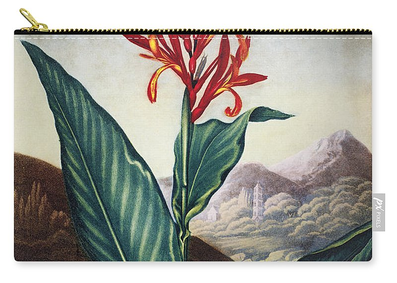 1804 Carry-all Pouch featuring the photograph Thornton: Indian Reed by Granger