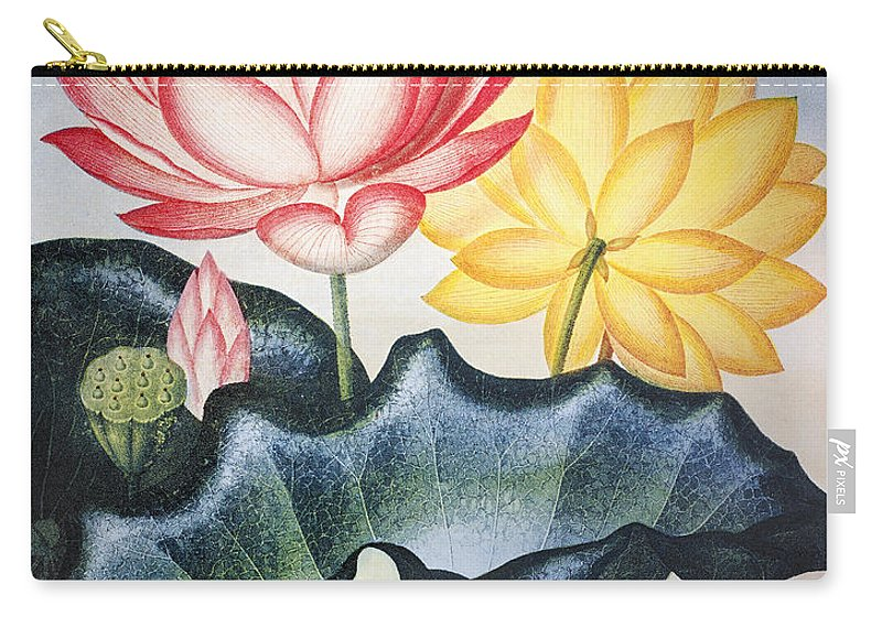 1804 Carry-all Pouch featuring the photograph Thornton: Lotus Flower by Granger