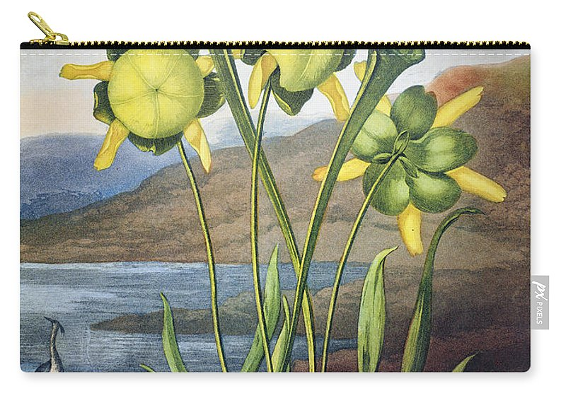 1803 Carry-all Pouch featuring the photograph Thornton: Pitcher Plant by Granger