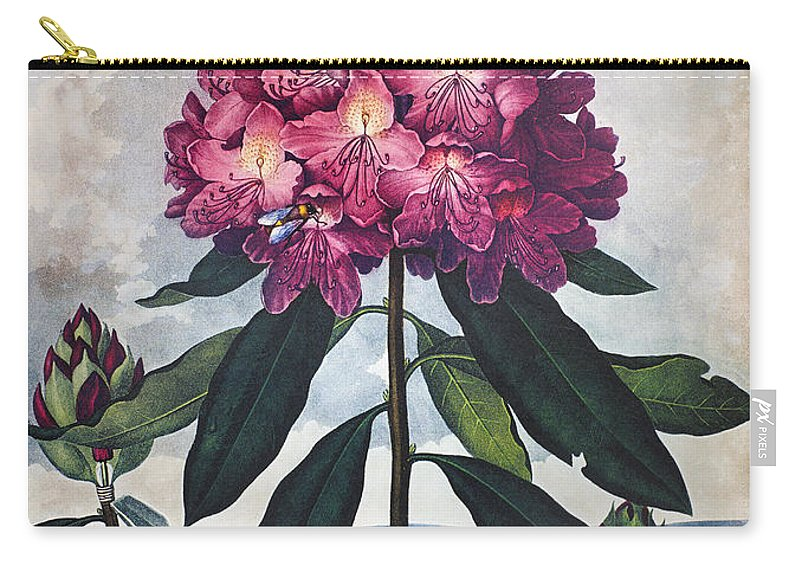 1802 Carry-all Pouch featuring the photograph Thornton: Rhododendron by Granger