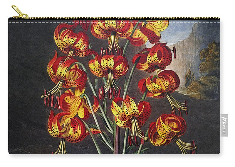 1799 Carry-all Pouch featuring the photograph Thornton: Superb Lily by Granger