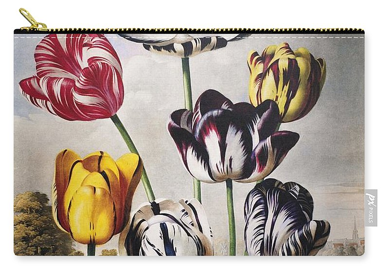 1798 Carry-all Pouch featuring the photograph Thornton: Tulips by Granger