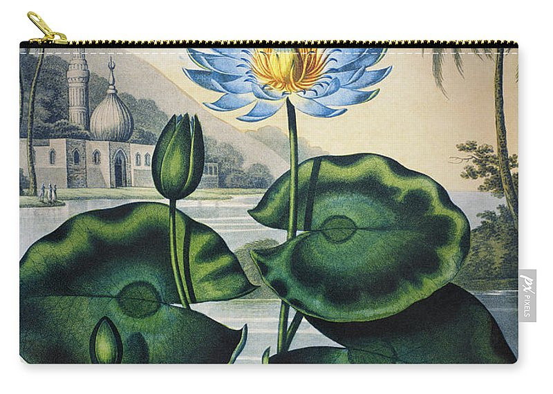 1804 Carry-all Pouch featuring the photograph Thornton: Water Lily by Granger