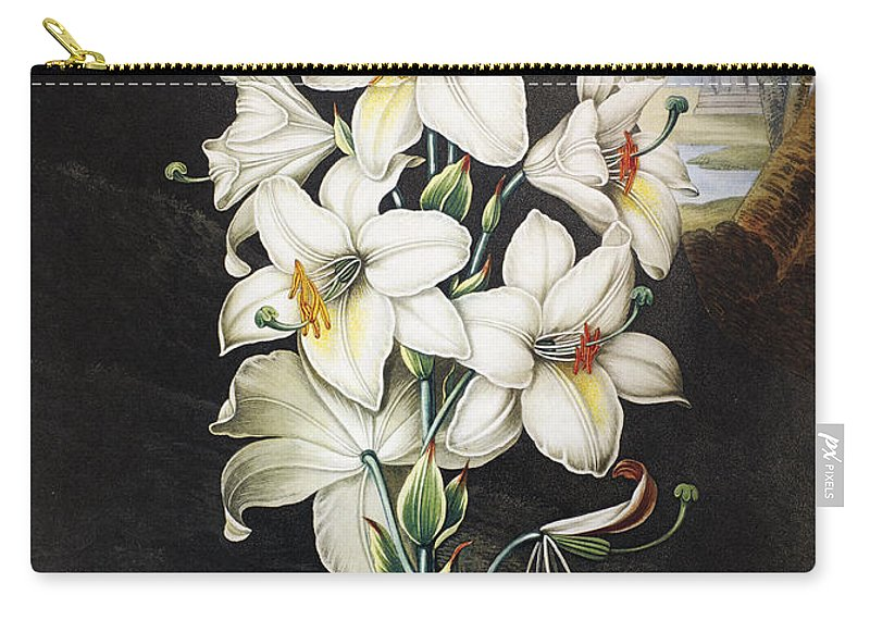 1800 Carry-all Pouch featuring the photograph Thornton: White Lily by Granger