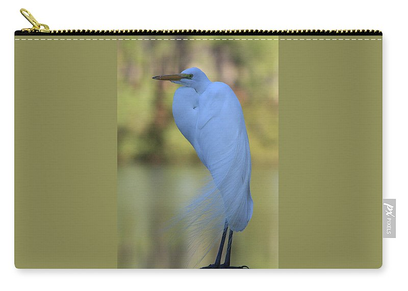 Heron Carry-all Pouch featuring the photograph Thoughtful Heron by Kim Henderson