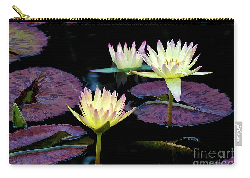 Lily Carry-all Pouch featuring the mixed media Three A-glow by Larry Dove