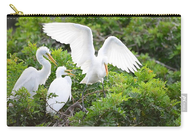 Birds Carry-all Pouch featuring the photograph Three Birds Of A Feather Flock Together by Patricia Twardzik