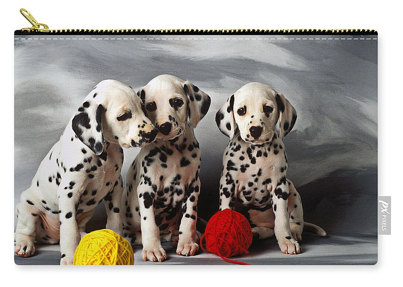 Three Dalmatian Puppies Carry All Pouch For Sale By Garry Gay