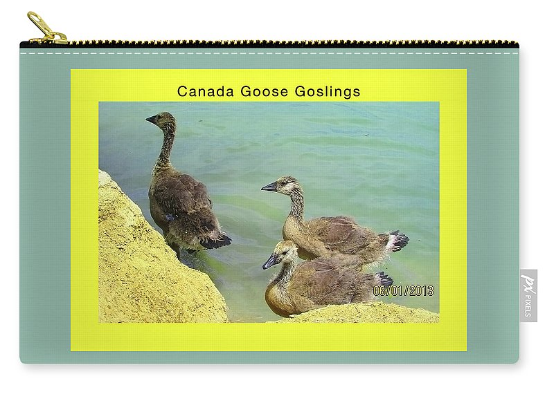 Birds Carry-all Pouch featuring the digital art Three Goslings by Kathleen J Beller