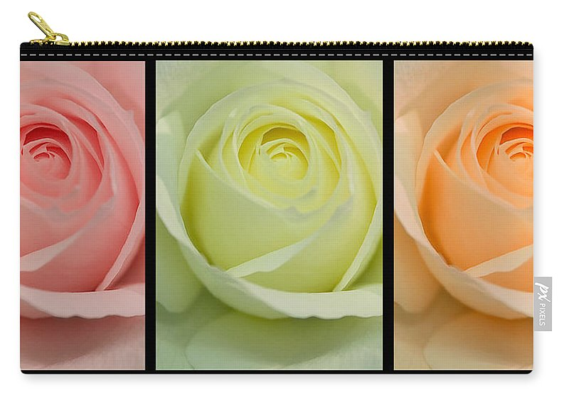 Roses Carry-all Pouch featuring the photograph Three In A Row by Brian Roscorla
