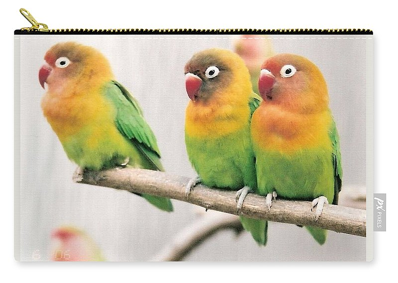 Birds Carry-all Pouch featuring the photograph Three Is A Crowd by Lauri Novak