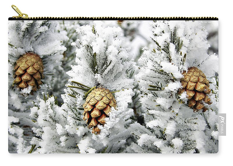 Frosty Carry-all Pouch featuring the photograph Three Pinecones by Marilyn Hunt