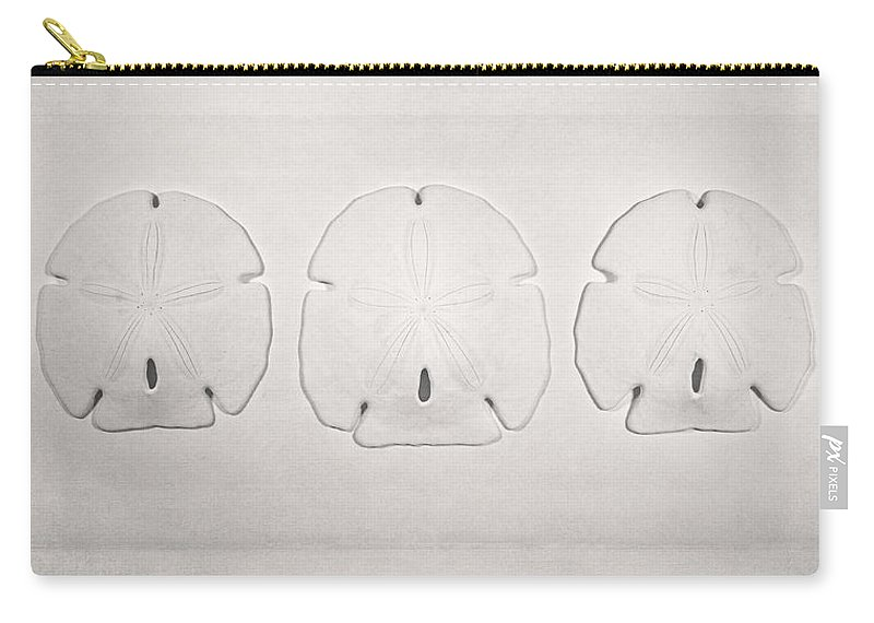 Scott Norris Photography Carry-all Pouch featuring the photograph Three Sand Dollars by Scott Norris