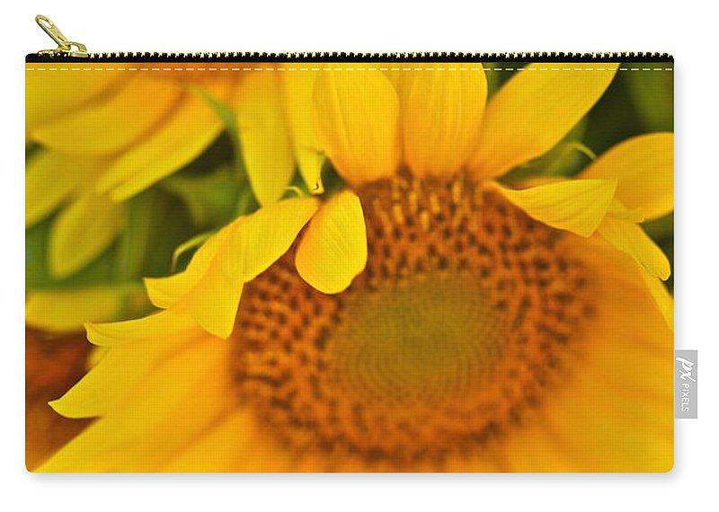 Yellow Carry-all Pouch featuring the photograph Three Sunflowers by Nadine Rippelmeyer