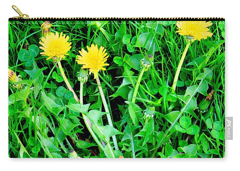 Dandylions Carry-all Pouch featuring the photograph Three Tenders by Ian MacDonald