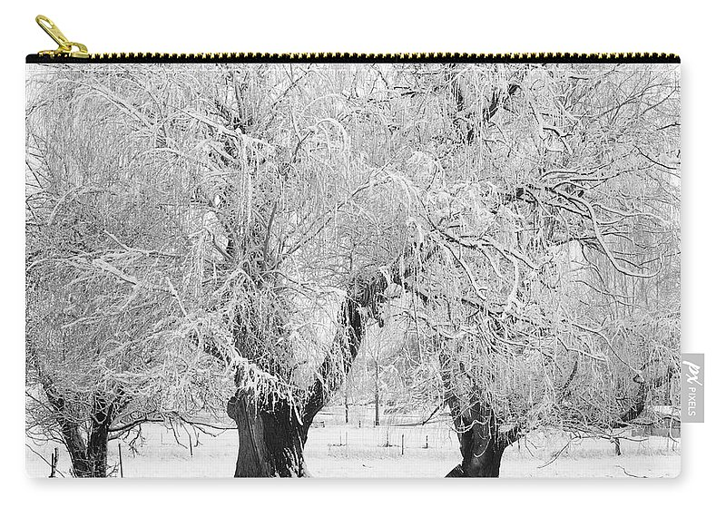 Black And White Carry-all Pouch featuring the photograph Three Trees In The Snow - Bw Fine Art Photography Print by James BO Insogna