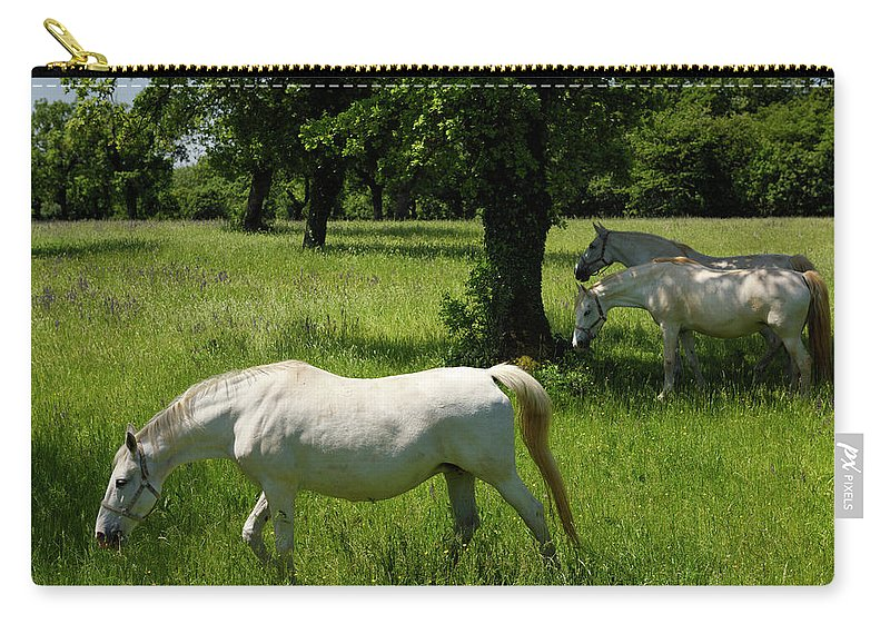 Three Carry-all Pouch featuring the photograph Three White Lipizzan Horses Grazing In A Field At The Lipica Stu by Reimar Gaertner