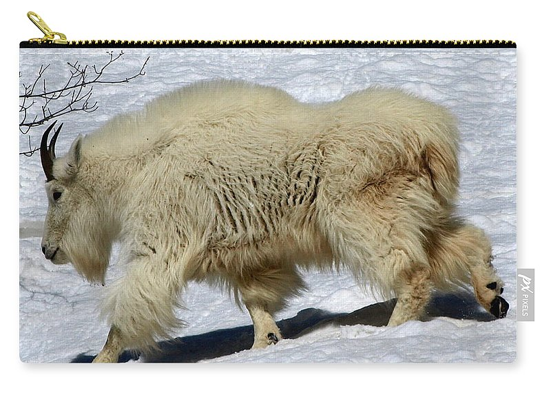 Mountain Goats Carry-all Pouch featuring the photograph Through The Snows by DeeLon Merritt