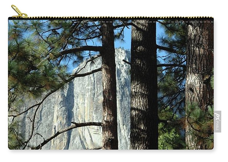 Trees Carry-all Pouch featuring the photograph Through The Trees by Kathleen Struckle