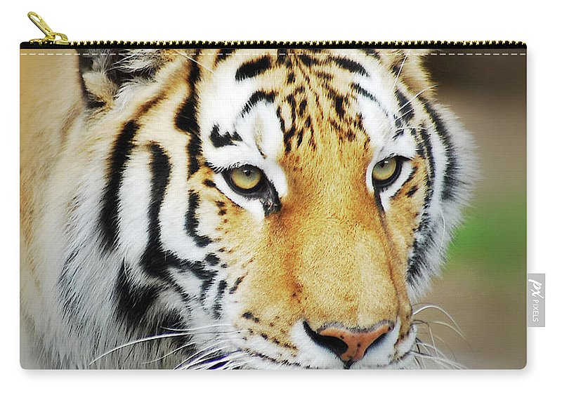 Yellow Carry-all Pouch featuring the photograph Tiger Eyes by Michael Peychich