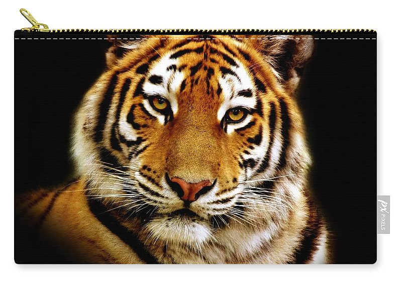 Wildlife Carry-all Pouch featuring the photograph Tiger by Jacky Gerritsen