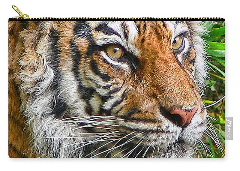 Tiger Carry-all Pouch featuring the photograph Tiger Portrait by Jennie Marie Schell