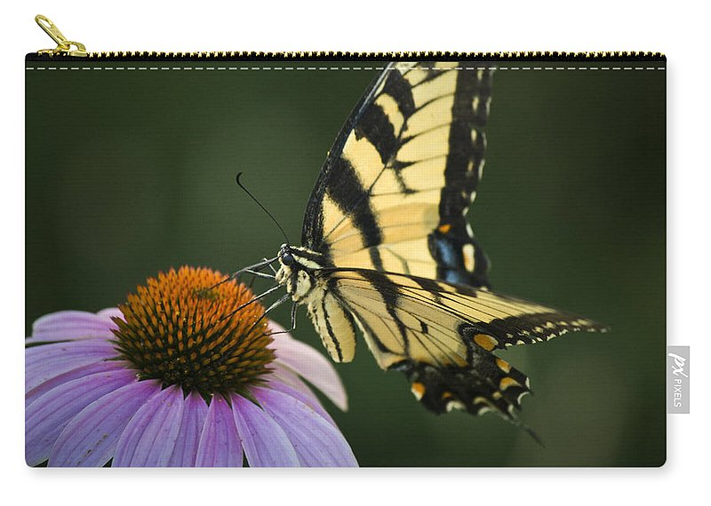 Butterfly Carry-all Pouch featuring the photograph Tiger Swallowtail 1 by Teresa Mucha