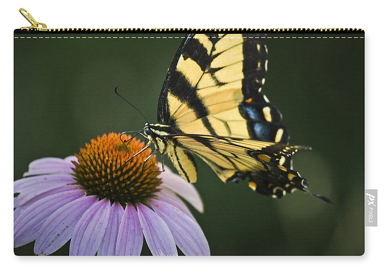 Garden Carry-all Pouch featuring the photograph Tiger Swallowtail 2 by Teresa Mucha