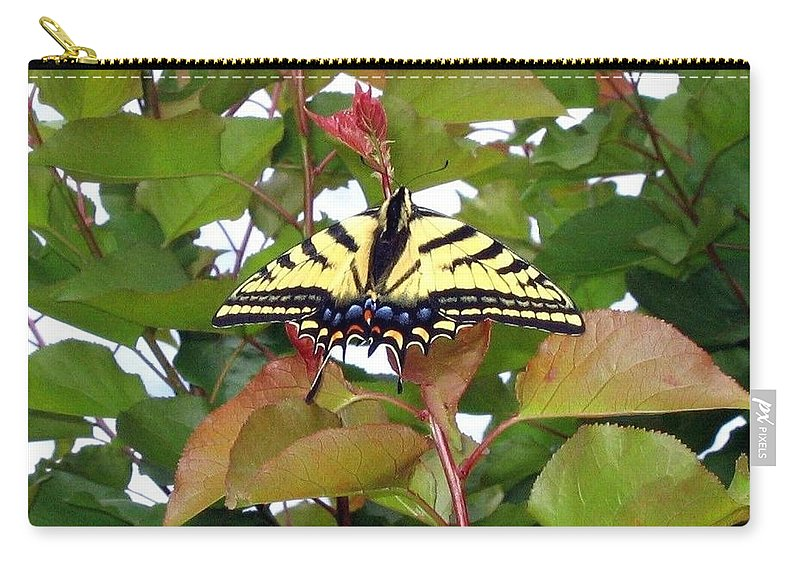 Butterfly Carry-all Pouch featuring the photograph Tiger Swallowtail Butterfly by Will Borden