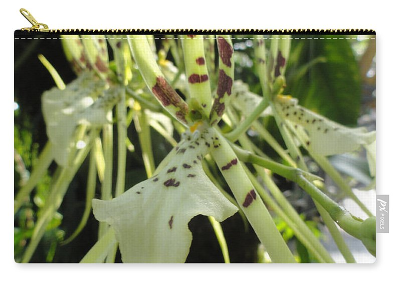 Orchid Carry-all Pouch featuring the photograph Tiger Tongue by Trish Hale