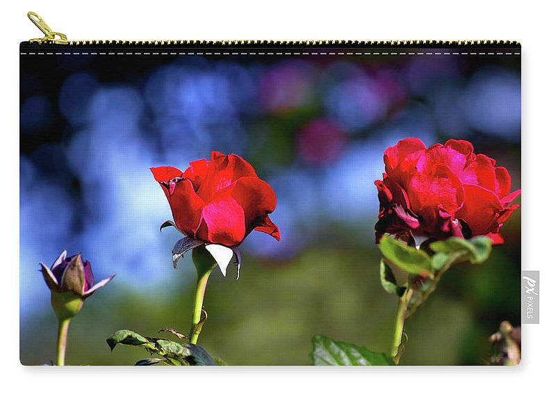 Rose Carry-all Pouch featuring the photograph Timeline by Mark Andrew Thomas