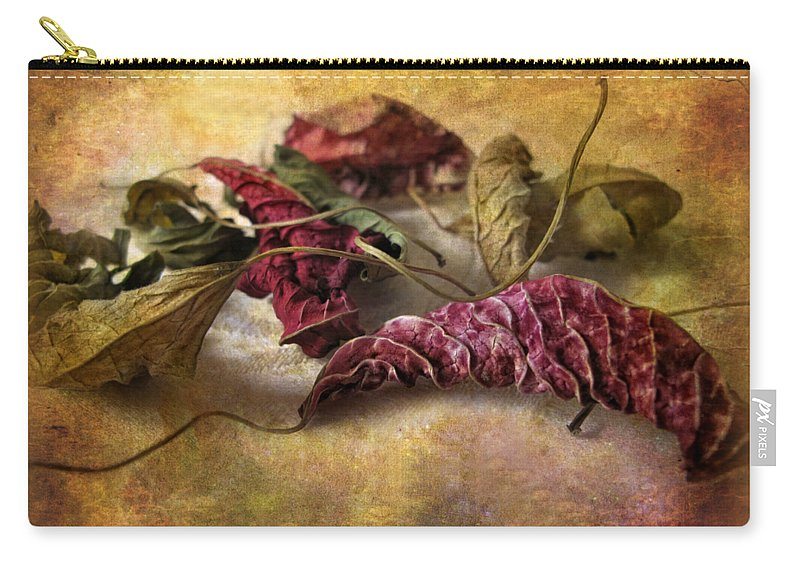 Leaves Carry-all Pouch featuring the photograph Timeworn by Jessica Jenney