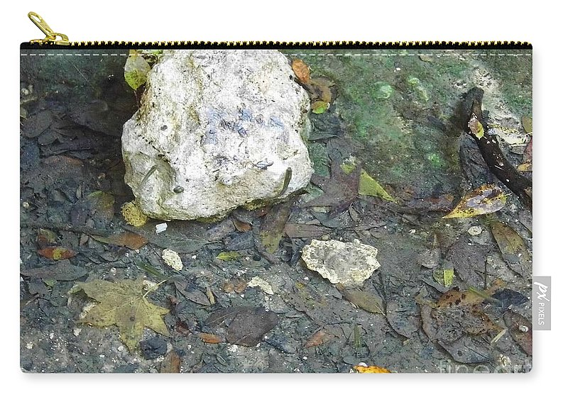 Grotto Carry-all Pouch featuring the photograph Tiny Fish In The Clear Water by D Hackett