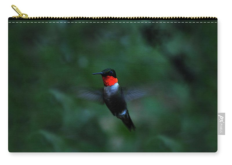 Hummingbird Carry-all Pouch featuring the photograph Tiny Flier by Lori Tambakis