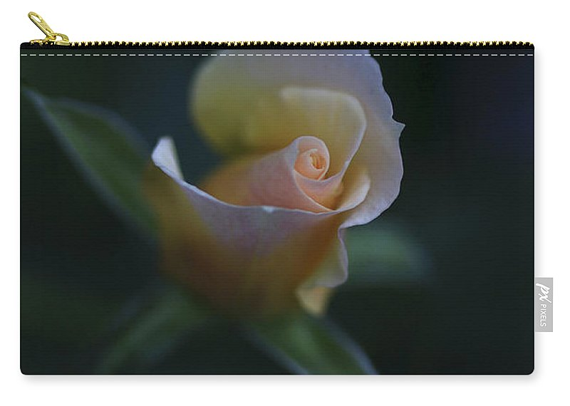 Flower Carry-all Pouch featuring the photograph Tiny Pink Rosebud by Deborah Benoit