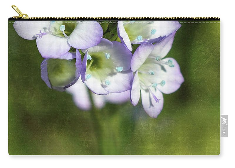 Wildflowers Carry-all Pouch featuring the photograph Tiny Purple And Blue by Erin Donalson
