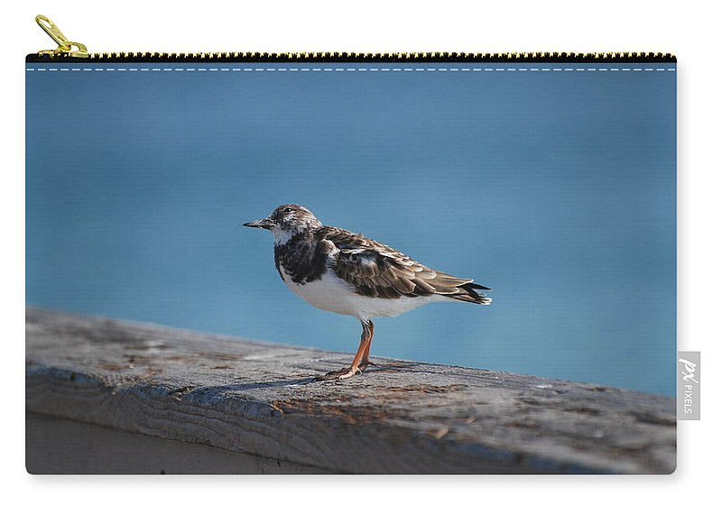 Bird Carry-all Pouch featuring the photograph Tippi Hedren by Rob Hans