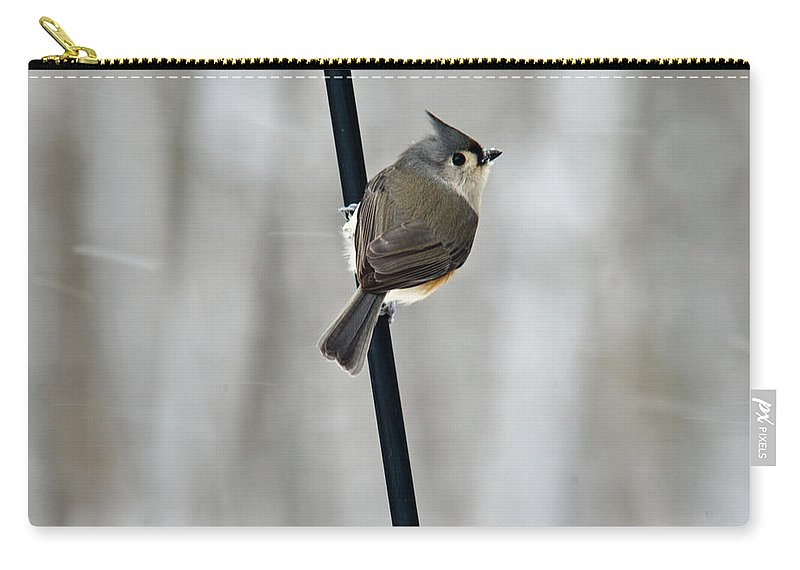 Titmouse Carry-all Pouch featuring the photograph Titmouse In A Snowstorm by Douglas Barnett