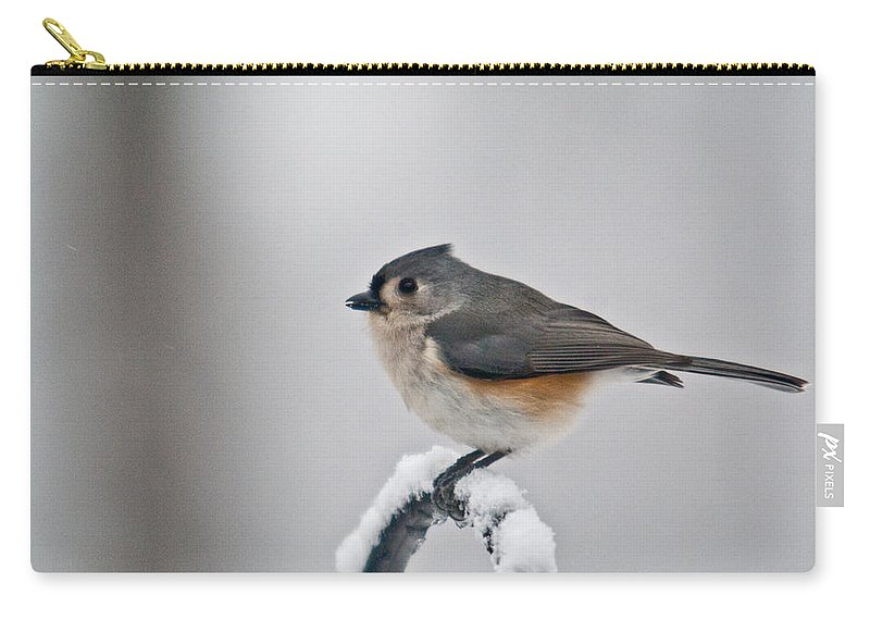 Titmouse Carry-all Pouch featuring the photograph Titmouse Ready To Fly by Douglas Barnett