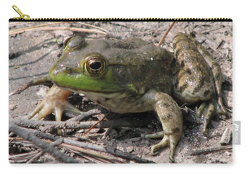 Toad Carry-all Pouch featuring the photograph Toad 1 by J M Farris Photography