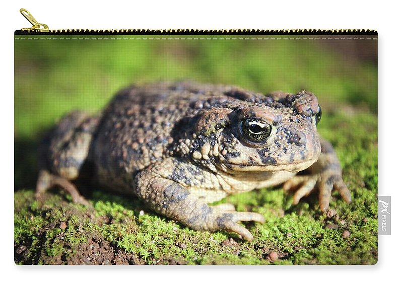 Green Carry-all Pouch featuring the digital art Toad You So by Carrie Epley