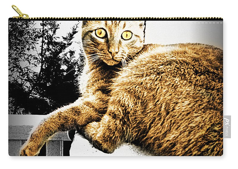 Cat Carry-all Pouch featuring the photograph Topaz Series 1 by Kathy Barney