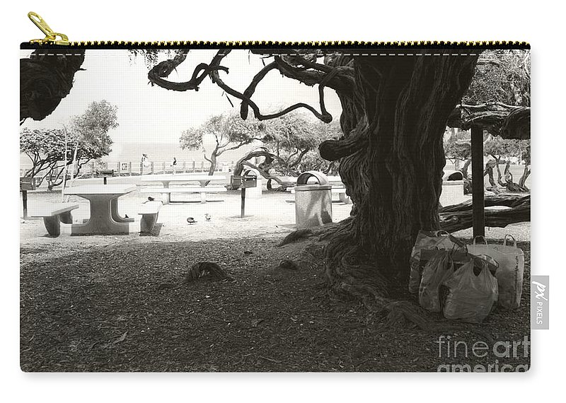 La Jolla Carry-all Pouch featuring the photograph Torrey Pines Baggage Claim by Heather Kirk